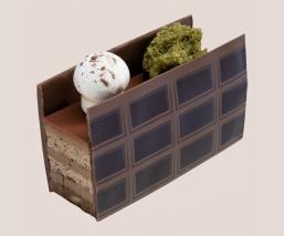 Buchette chocolat lichen